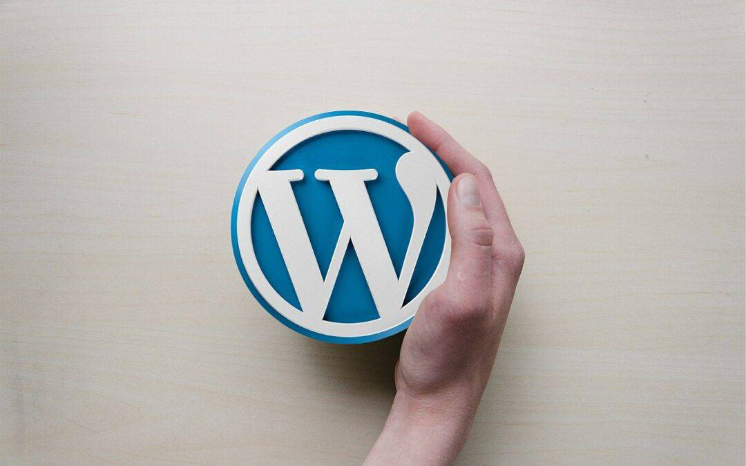 5 WordPress Maintenance Plugins You Should Have